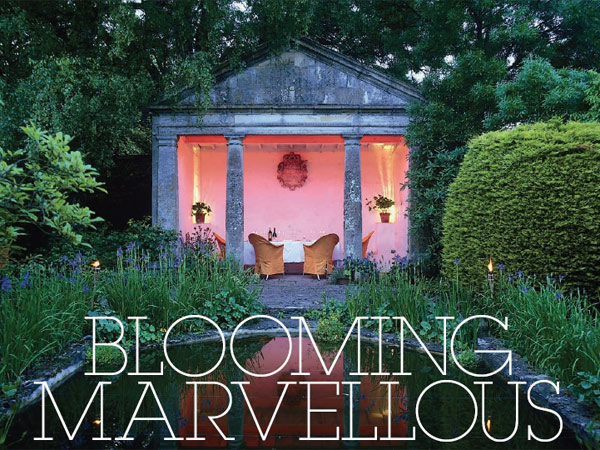 Blooming-Marvellous_cropped